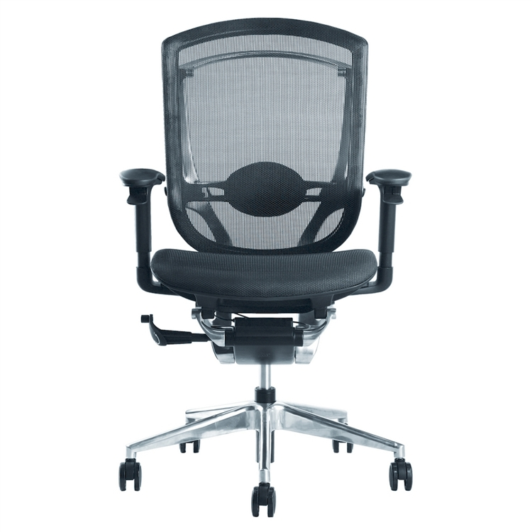 Ergonomic Ergo Fit Highly Adjustable Mesh Office Chair